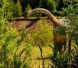 Illustration Of A Brachiosaurus In The Shrubbery
