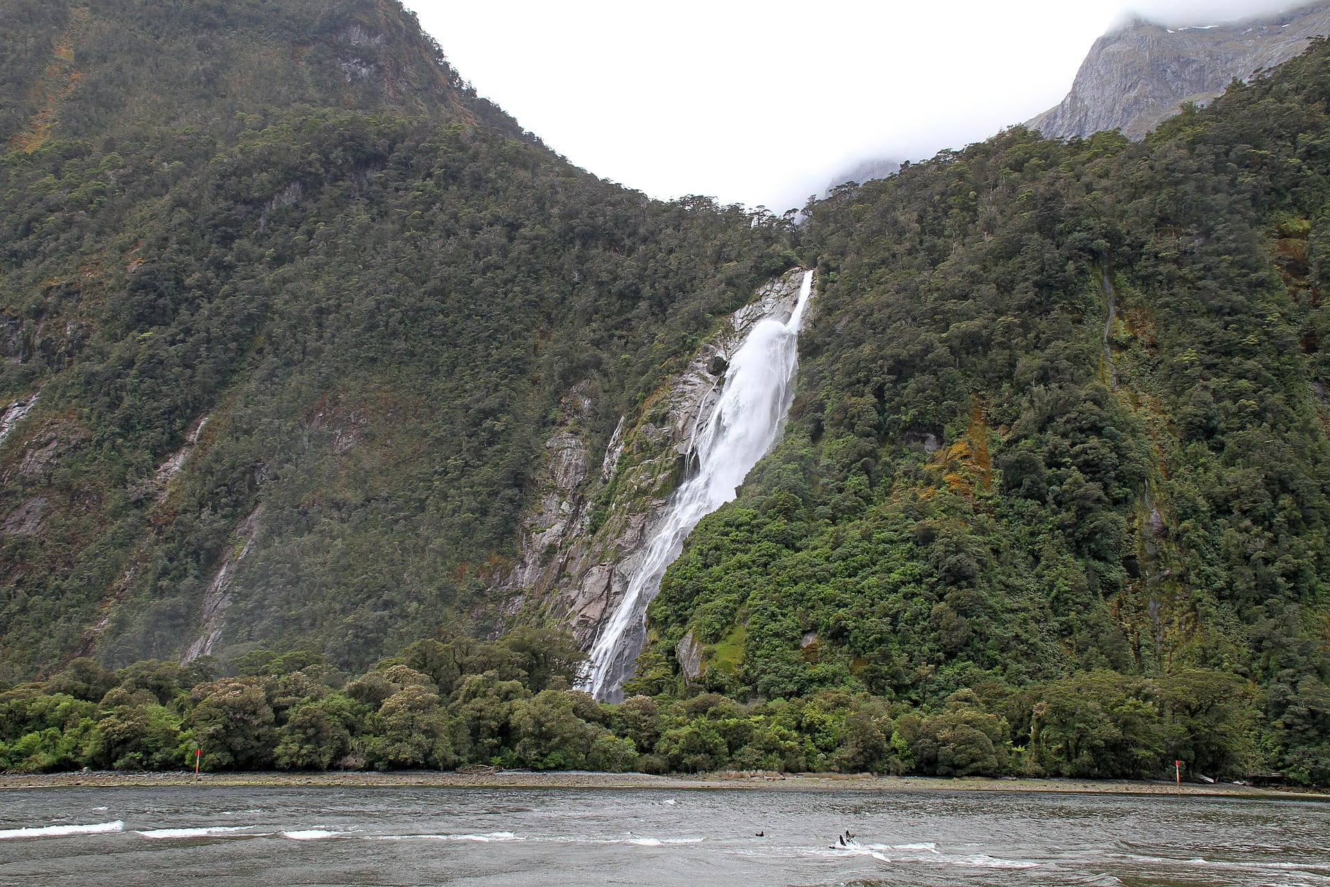 //commons.wikimedia.org/wiki/Category:Fiordland_National_Park#/media/File:Milford_Sound_Waterfall_5_(30822786813).jpg