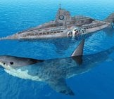3D Illustration Of A Megalodon Next To A Submarine.photo By: (C) Miro3D Www.fotosearch.com