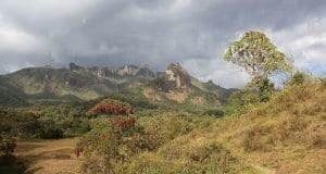 https://en.wikipedia.org/wiki/Bale_Mountains_National_Park#/media/File:Harenna_Forest_(16139095228).jpg