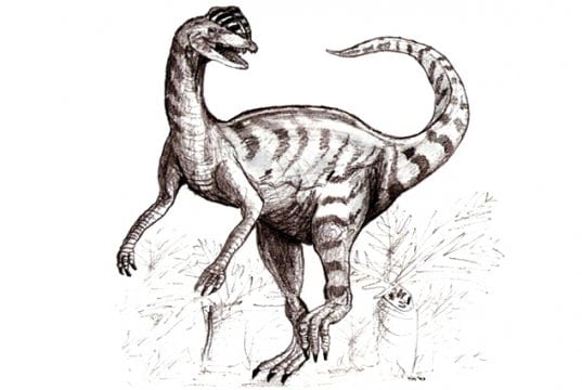 Sketch of a dilophosaurus in late 20th century vision