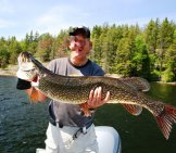 43 Inch Monster Pikephoto By: Ray Dumashttps://creativecommons.org/licenses/by-Sa/2.0/
