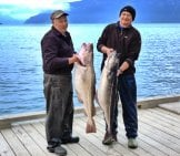 Sport Fishermen Showing Off Their Coalfish Catch Photo By: Brendan Https://creativecommons.org/licenses/by/2.0/