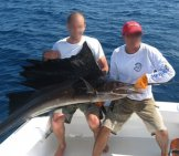 Sailfish Catch Photo By: Anonymous Unknown Author Cc By-Sa Https://creativecommons.org/licenses/by-Sa/3.0