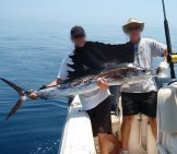 Two Men Holding A Fresh-Caught Sailfish Photo By: Widttf / Cc By-Sa Https://creativecommons.org/licenses/by-Sa/2.0