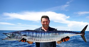 Lucky fisherman holding a beautiful Wahoo fishPhoto by: (c) sablin www.fotosearch.com